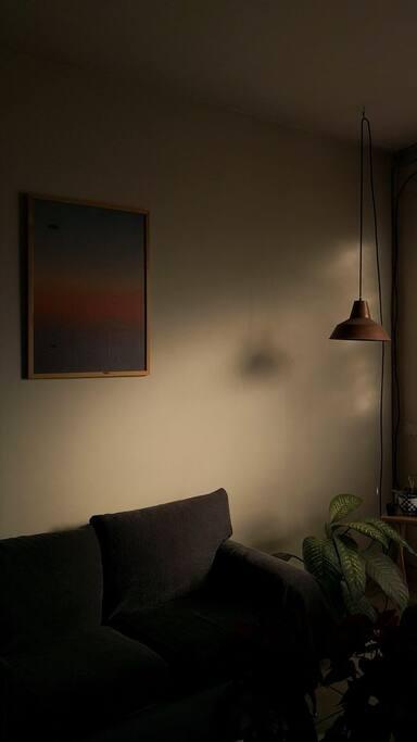 Luz en la mañana