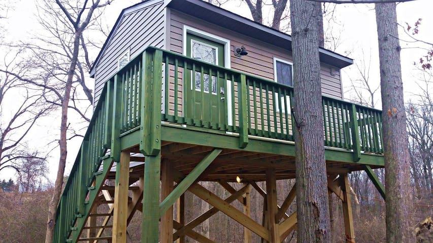 Custom Built Tree House in Perry Hall