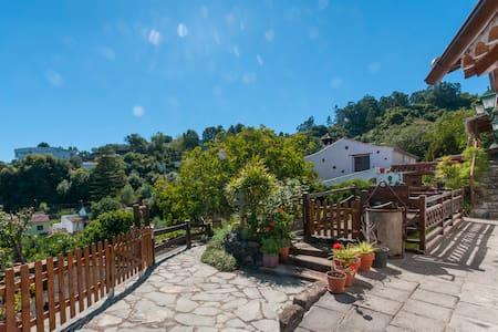Casa Rural en Valleseco (GC0042) - Valleseco - 단독주택