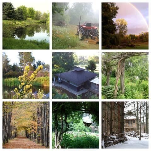71 Acre Nature Preserve