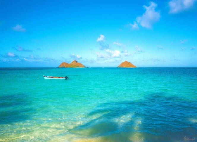 Our beautiful Kailua Bay!  You are about 5 minutes away from the beach!