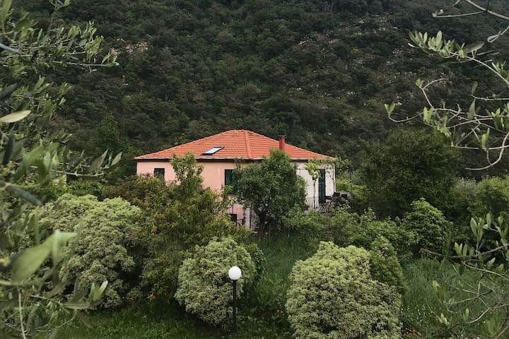 Casa degli Orti / Garden House