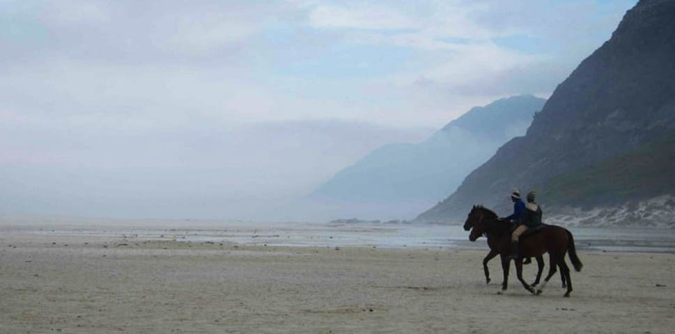 horse riding and