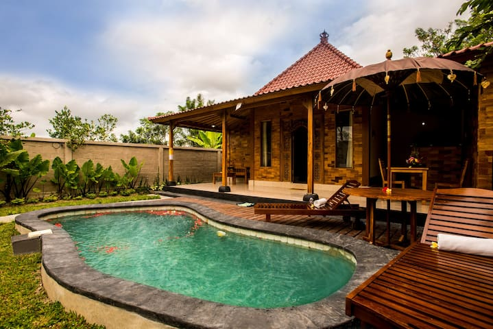 Classic wooden villa My Way & the private pool