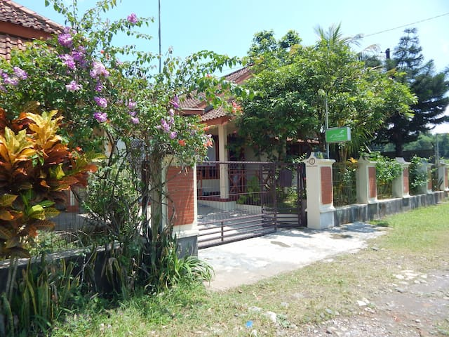 d'Katu Guest House - Sidorejo - Rumah