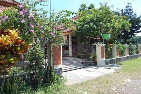 d'Katu Guest House - Sidorejo - House