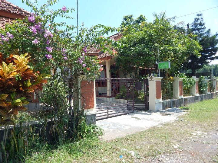 d'Katu Guest House