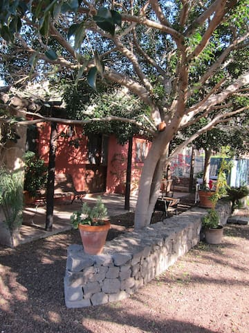 Viv V Rural Hornos del Rey Marzagán - Telde - Appartement