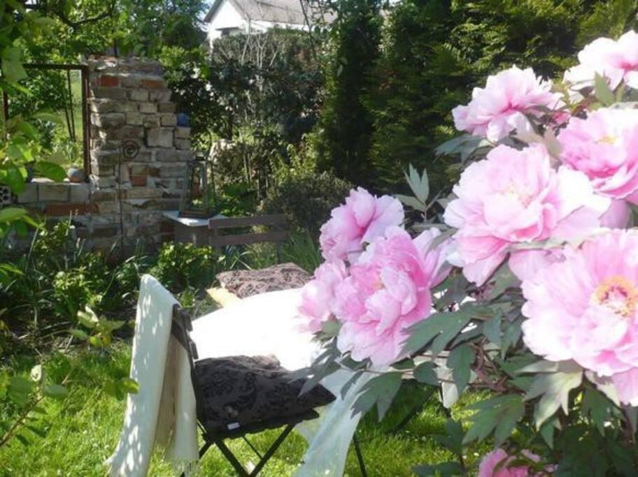 Im Garten.