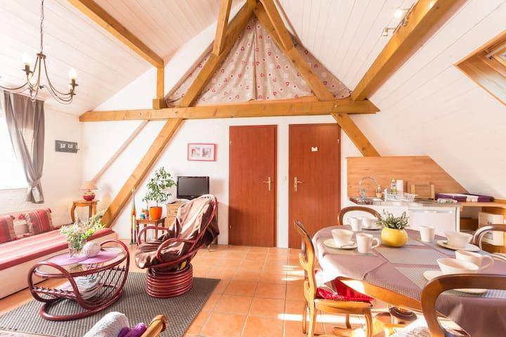 Appartement climatisé au cœur d'Alsace classé 2 **