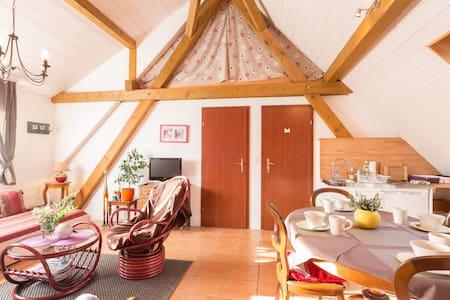 Bel appartement au coeur d'Alsace classé 2 ** - Artzenheim - Loteng