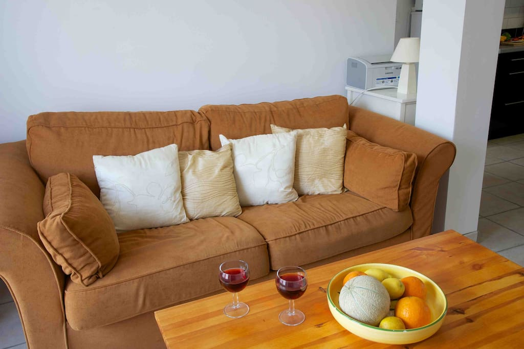 Comfortable living room with sofa bed.