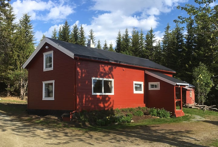 Høier Gård - sheep farm