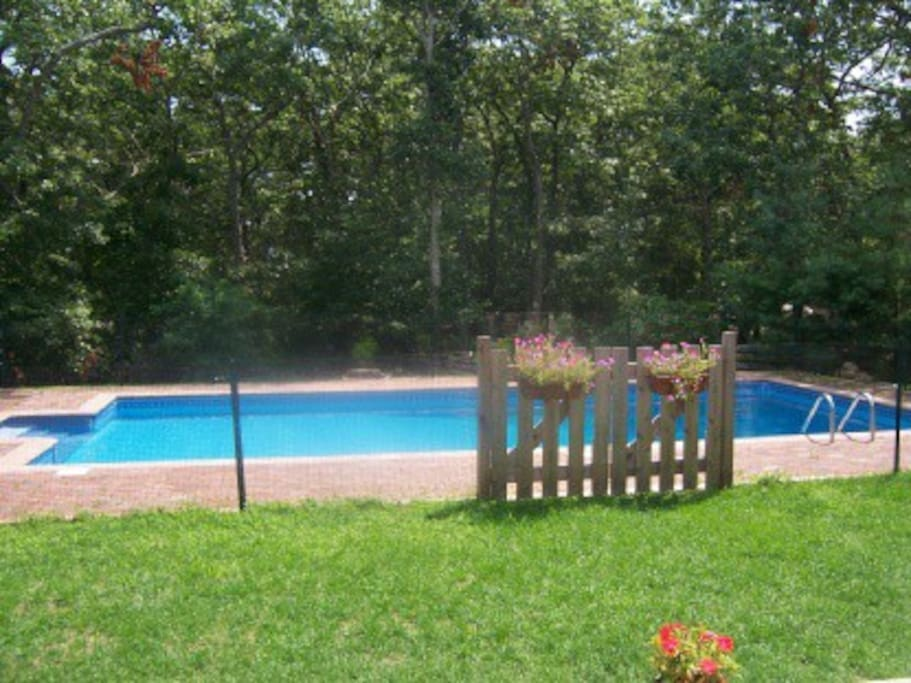20x40 Pool with Brick Surround