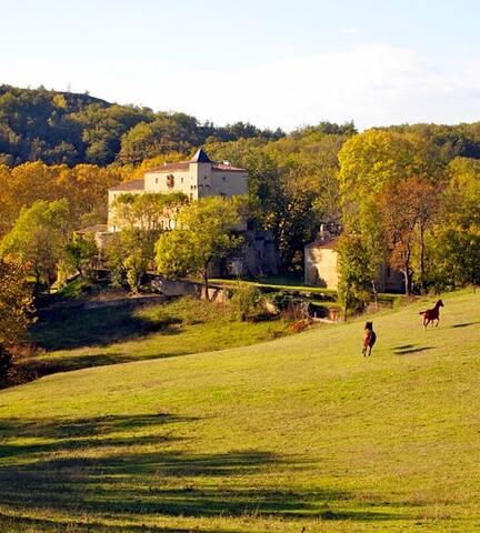 Chateau Le Quille