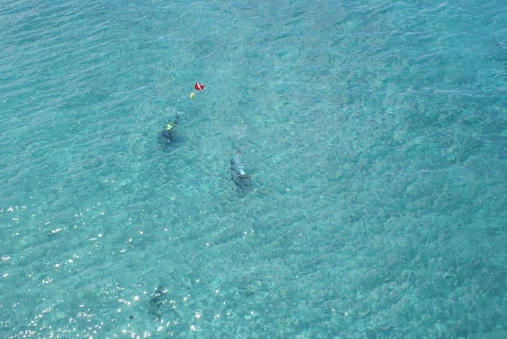 Oceanside Villa Palm Beach Shores
