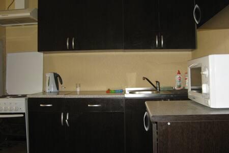Апартаменты на 24-ой Северной - Omsk - Huoneisto