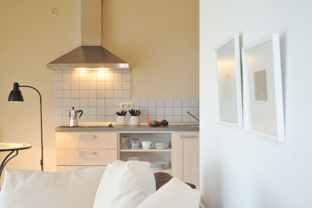 Open kitchen with fridge and cooking battery
