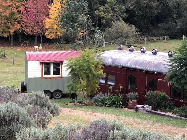 Glamping Rustic Train Carriage Alpaca-farm Laguna