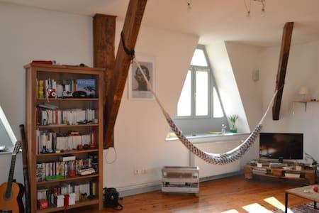 Bel appartement de 90 m² - Le Puy-en-Velay - อพาร์ทเมนท์