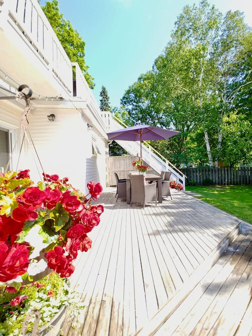 Lot's of flowers and large yard to enjoy during your stay.