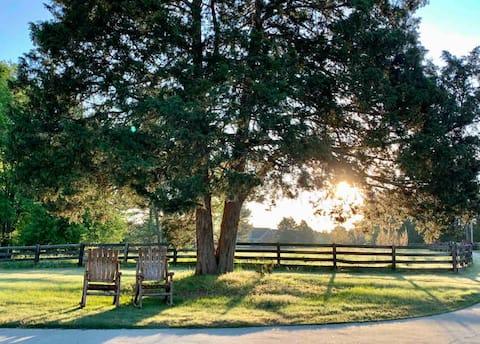 Regal Ranch Retreat *Dog & Horse Friendly*