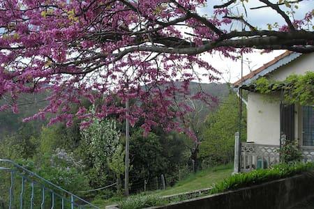 Gite du Pin en Cévennes - Saint-Martin-de-Boubaux - Appartamento con trattamento alberghiero