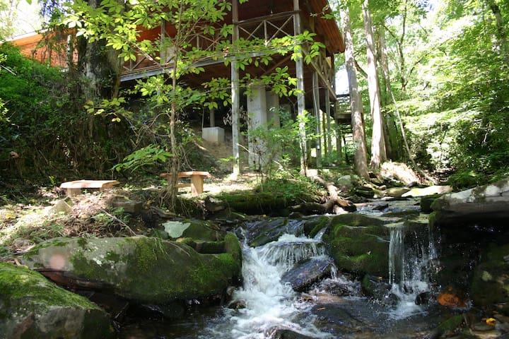 Creek runs right along cabin!