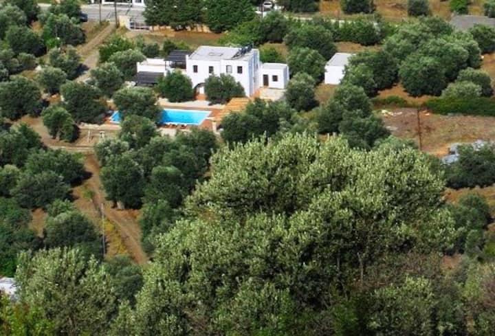 villa Rose ground floor