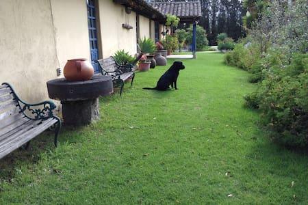 Hacienda antigua dos habitaciones - Pifo - Bed & Breakfast
