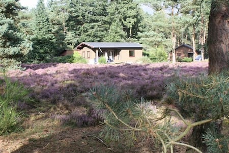 Cottage in Veluwe - Wekerom - Ház