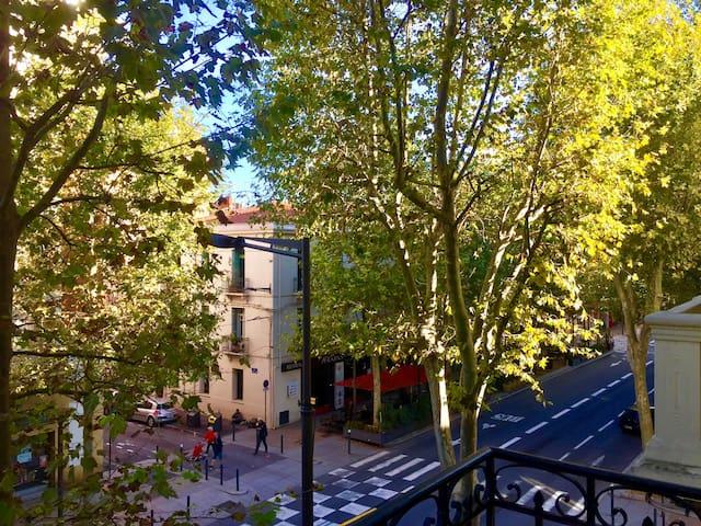Le balcon donne dans les arbres du boulevard