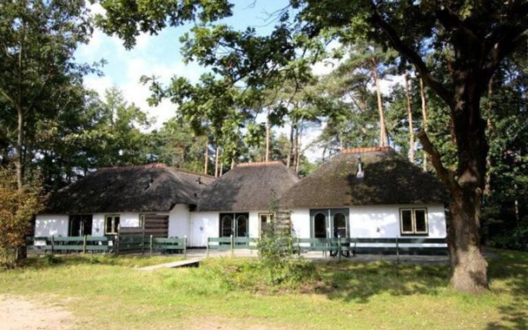 Ruim en rolstoelvriendelijk Familiehuis Veluwe