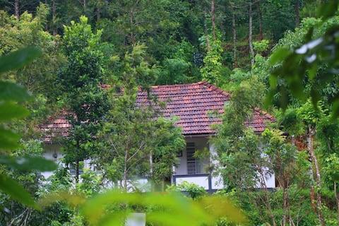 Ann's Farm Stay, Poothali, 27 Kms away from Munnar