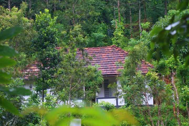 Ann's Farm Stay, Poothali, 27 Kms away from Munnar