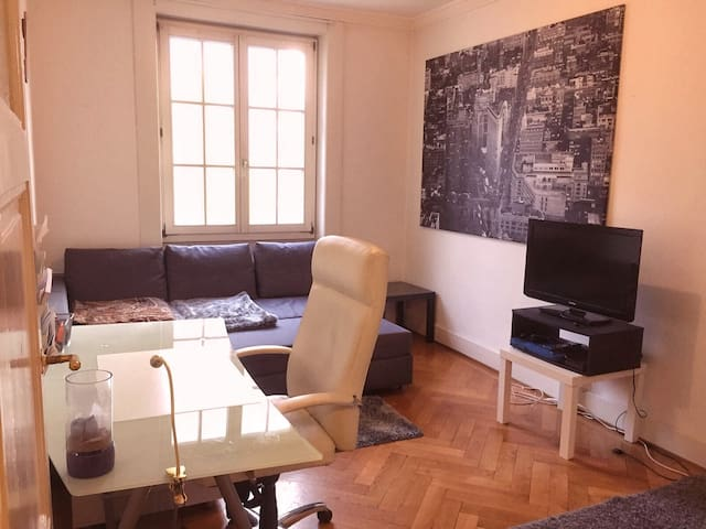 Cosy Flat In Central Geneva next to river - Cenevre - Daire