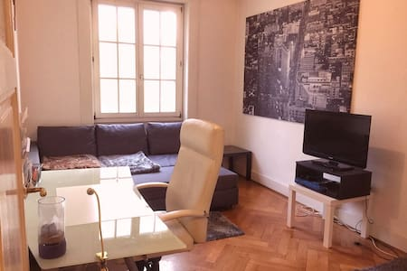 Cosy Flat In Central Geneva next to river - 日内瓦 - 公寓