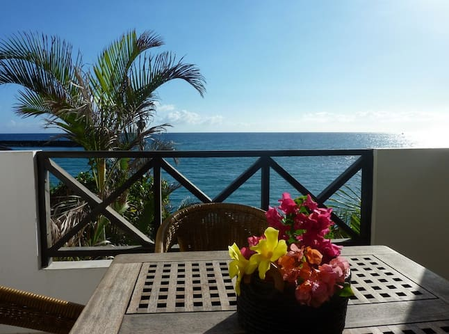 Lovely studio on the beach! - Saint-Gilles - Apartment