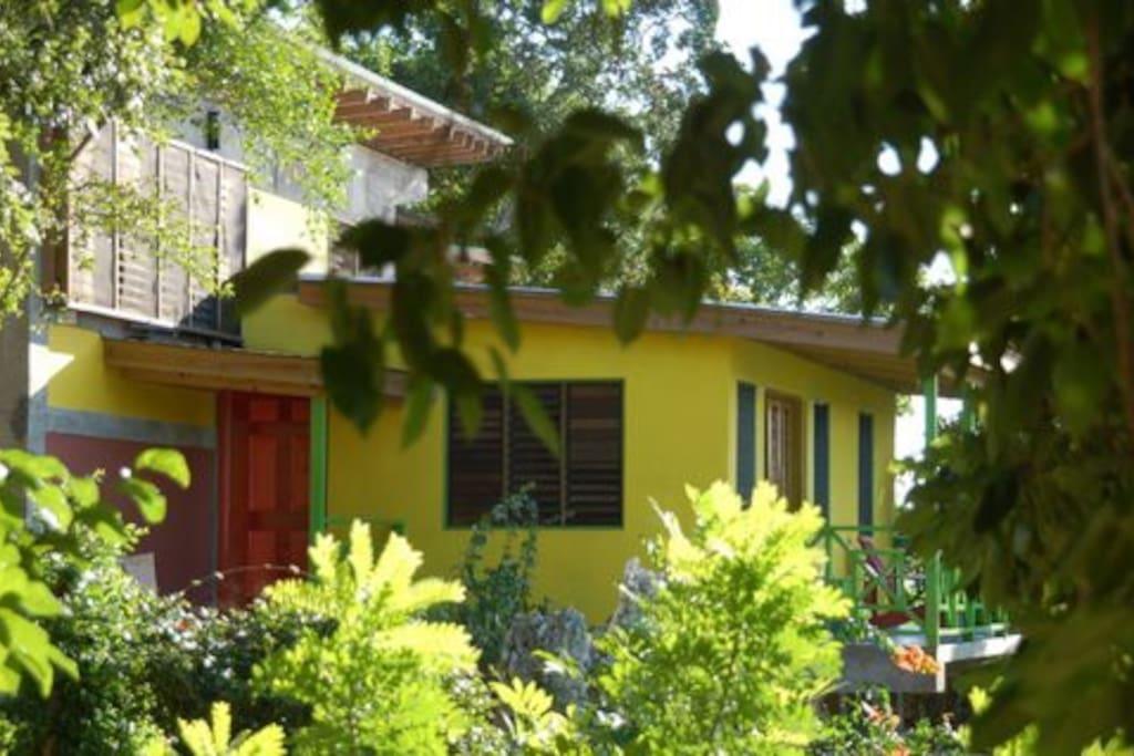 Flo's studio on top, balcony studio on bottom