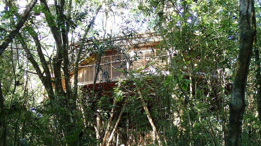 Dream Catcher Tree House - San Rafael Abajo - Boomhut