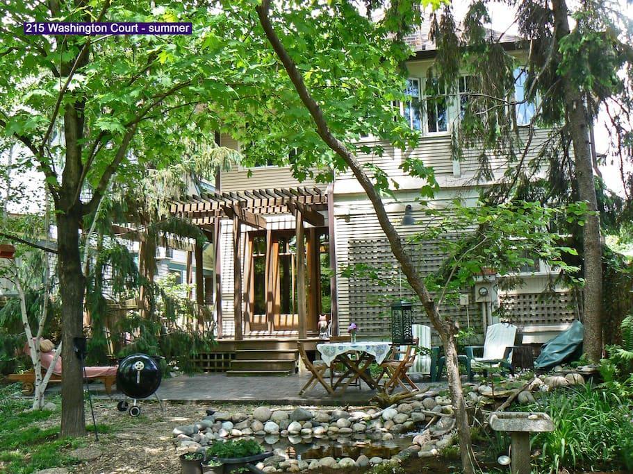 Backyard sanctuary in summer