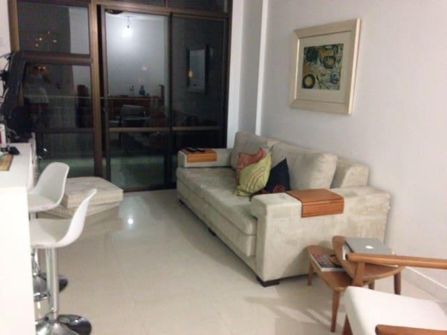 During the Olympics, 2 bedroom... - Rio - Lägenhet