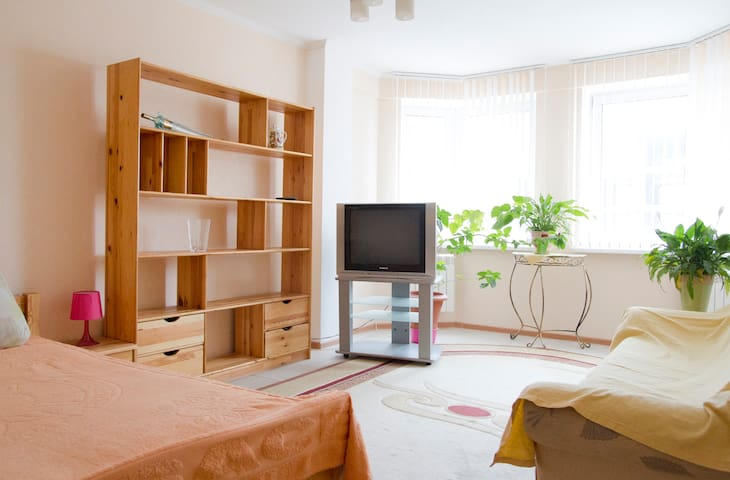 Apartment with excellent repair - Minsk - Appartement