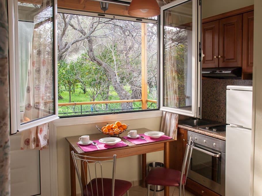 Olive trees view through kitchen