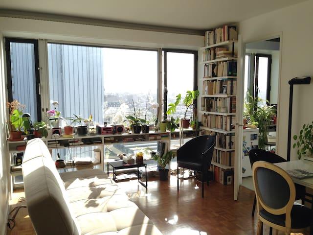 superbe vue de paris montparnasse appartements louer paris le de france france. Black Bedroom Furniture Sets. Home Design Ideas