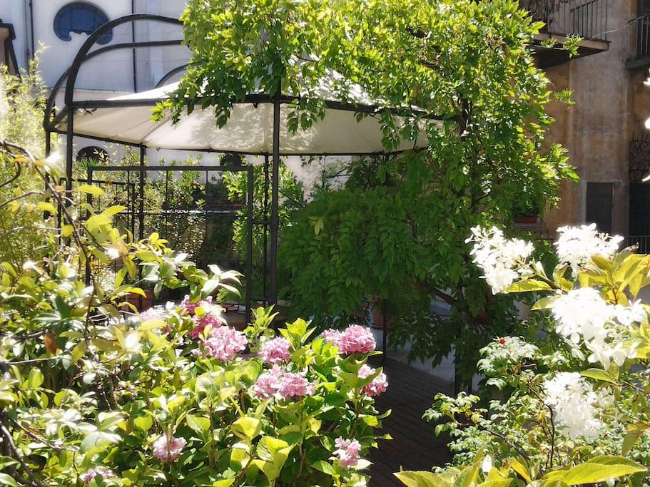 fiori e arredi della terrazza