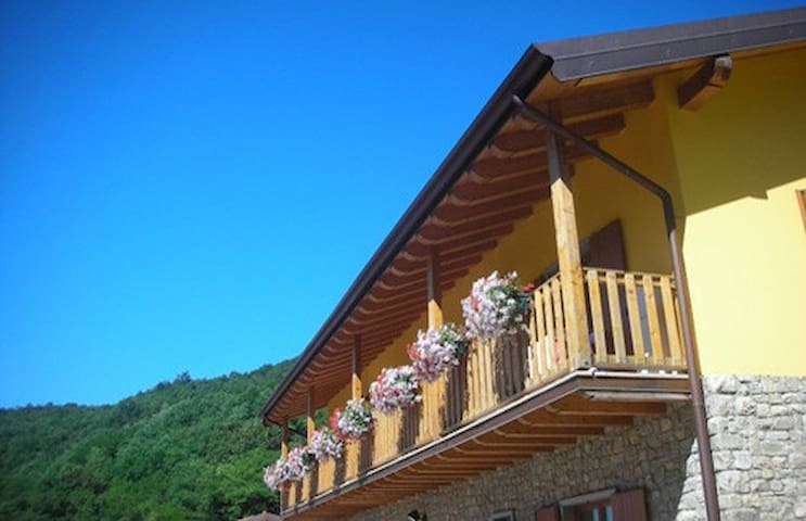 Bed and Breakfast in the wood... - Cenate Sopra - Bed & Breakfast