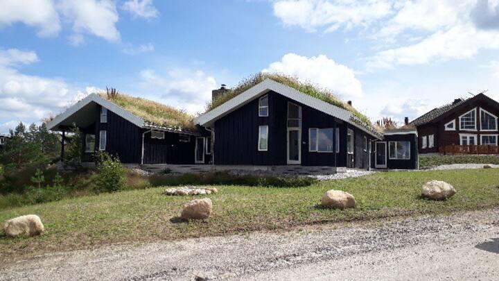 Tun hytta på toppen av Gautefall i Telemark