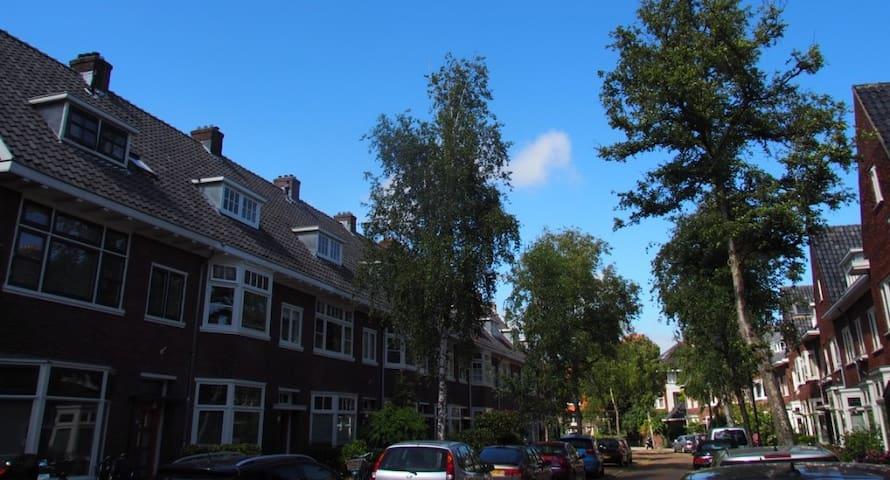 Pijntorenstraat