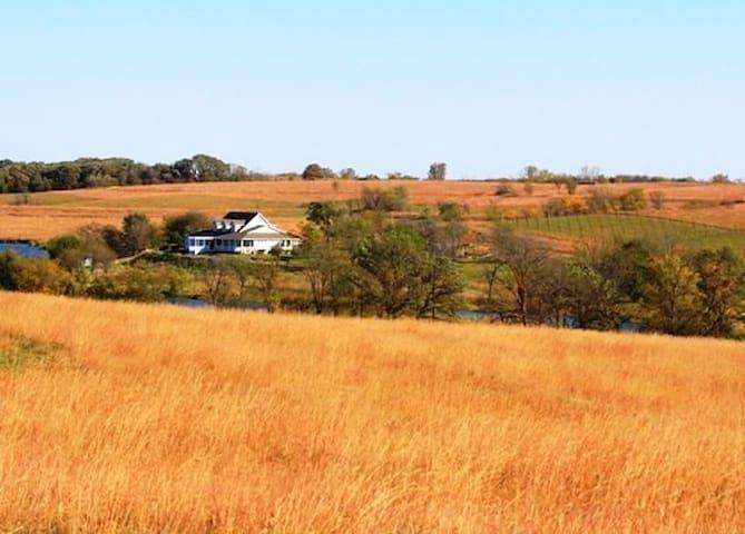 Sheah Blue Vineyard - Main Residence